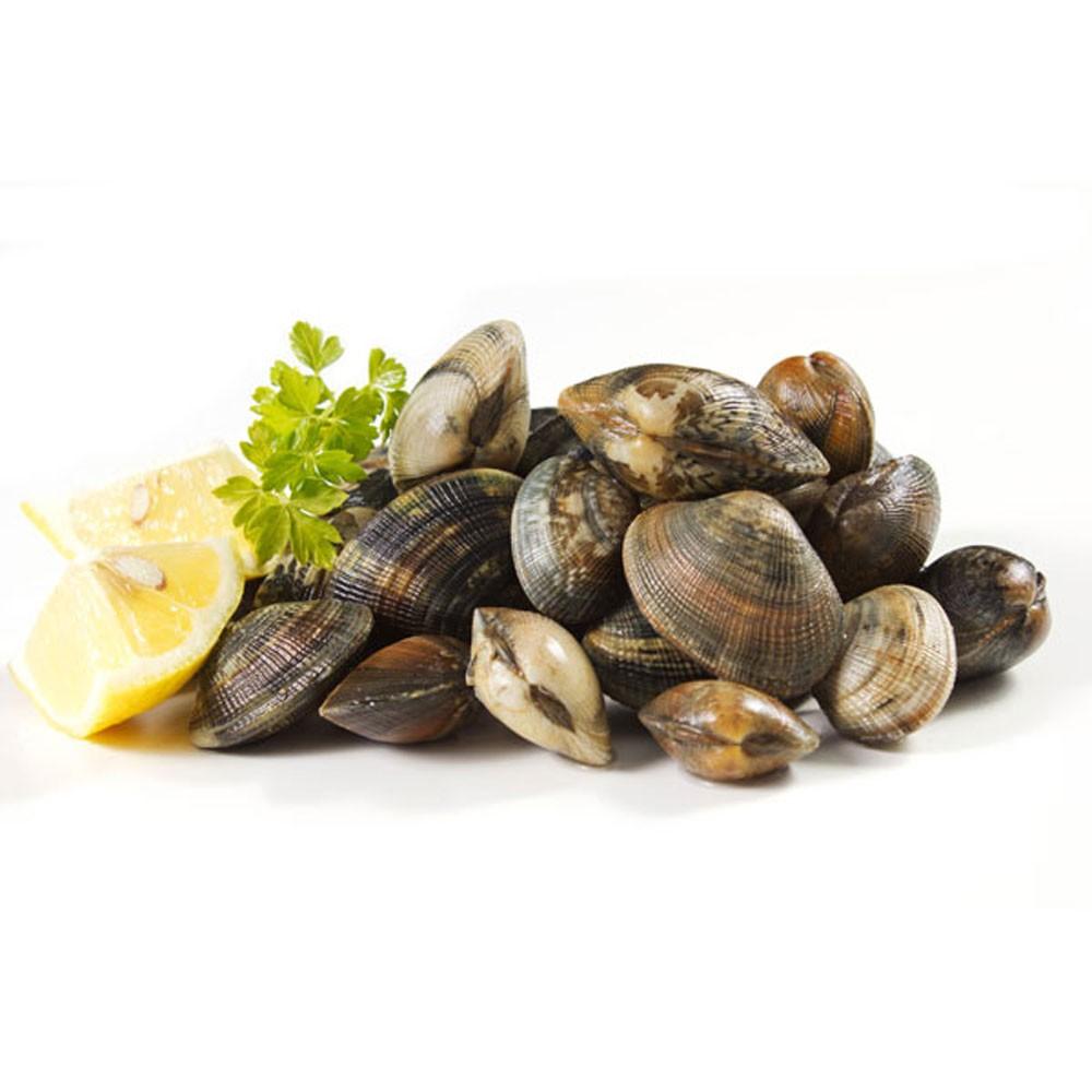 http://www.fish2go.com.sg/media/catalog/product/cache/1/image/9df78eab33525d08d6e5fb8d27136e95/f/i/fish2go_asari_clams_2.jpg