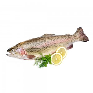 Trout (Whole Fish)