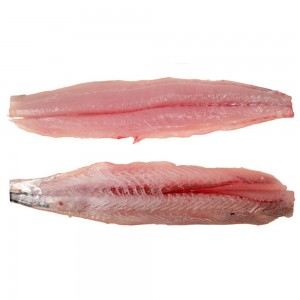 Spanish Mackrel Filet